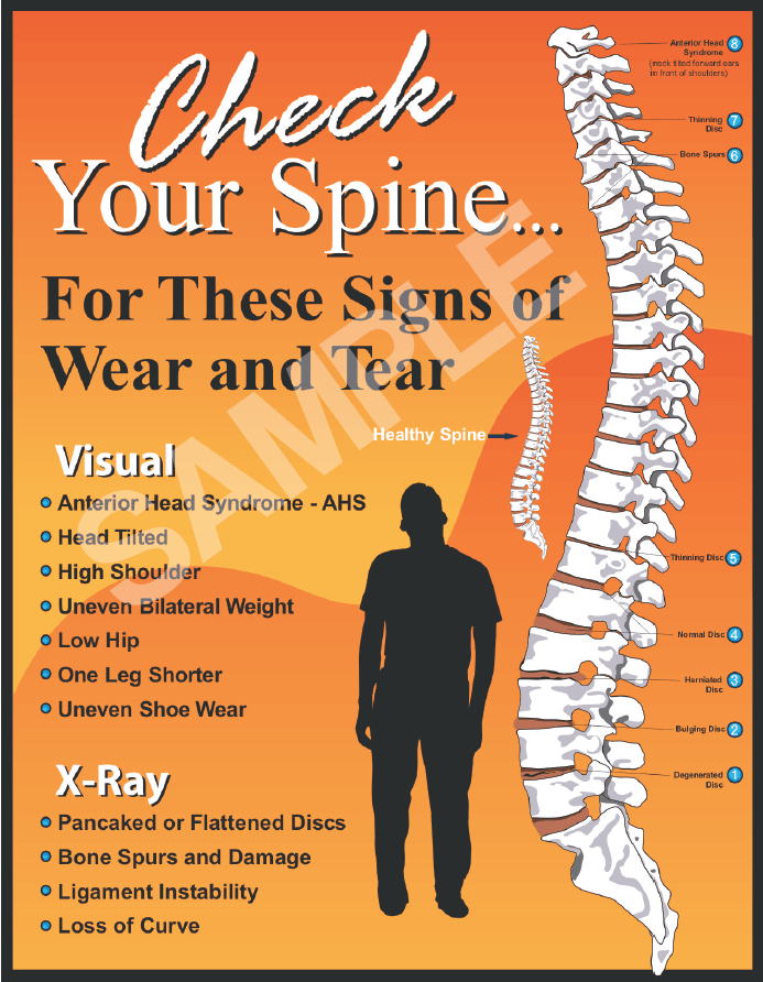 check your spine sample